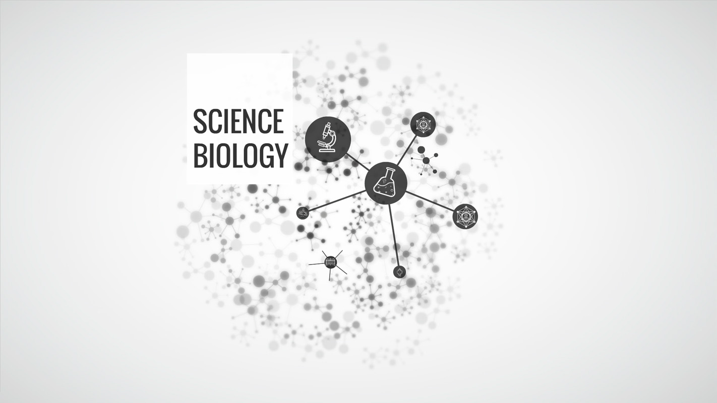 Template In Biology