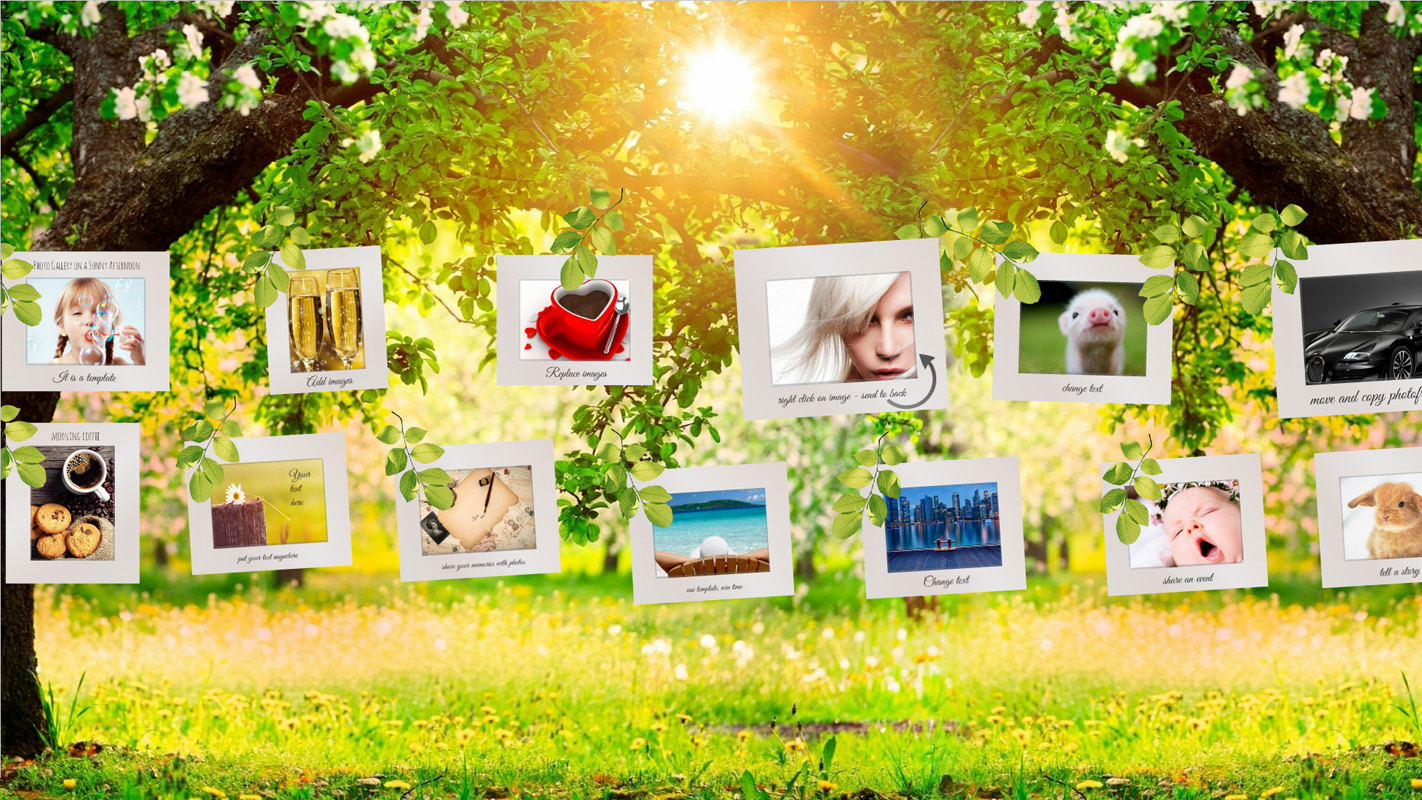 Photo Gallery on a Sunny Afternoon Prezi template